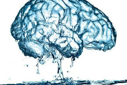 Falta de água pode encolher cérebro